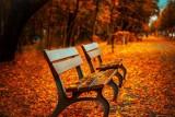 Pogoda na weekend w regionie. Jak będzie 11 i 12 listopada?