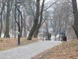 Park Sobieskiego w Wałbrzychu jest świetnym miejscem na styczniowy spacer. Sprawdziliśmy