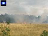 Dwa pożary na terenie Gniezna. Interweniowała straż