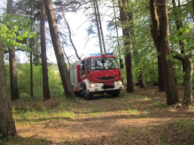 Wczoraj (17 maja) w późnych godzinach wieczornych strażacy gasili płonącą łąkę, znajdującą się w pobliżu lasu oraz terenu OSiR w Ustce.