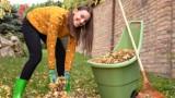 Jesienne porządki w domu i ogrodzie. Co zrobić teraz, aby oszczędzić sobie nerwów zimą i wiosną?