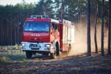 Nagrody po 5000 złotych zniechęcą podpalaczy? Płoną lasy w rejonie Miedzichowa oraz Puszcza Notecka