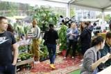 Wielka Sprzedaż Roślin w Poznaniu. Od czwartku do soboty pasjonaci roślin mają do wyboru ponad 150 odmian roślin