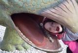 Dinozaury i wieża widokowa w Głobikowej. Atrakcja nie tylko dla mieszkańców Dębicy. Świetny pomysł na weekend [ZDJĘCIA]