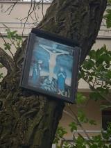 Kraków. Zamieszanie ze stacjami drogi krzyżowej w parku Lotników. Zostały zdjęte, ale wrócą