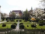 Odpoczynek na łonie natury w miejskiej dżungli? Ogrody krakowskich muzeów to opcja na szybki reset [GALERIA]
