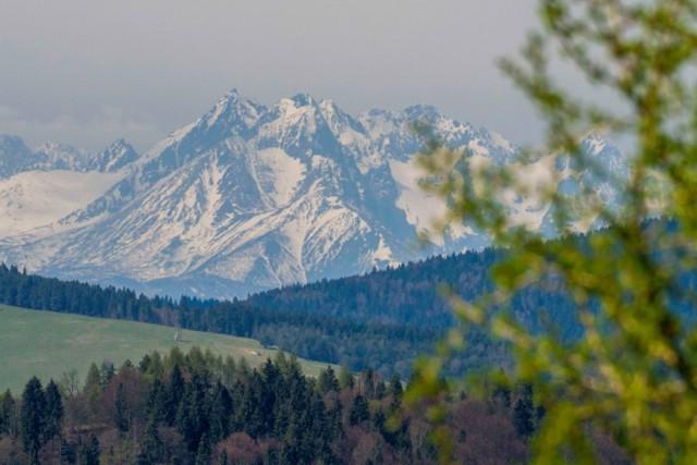 Tatry widziane z Muszyny i wiosenny pejzaż u ich podnóża