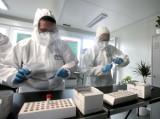 Najnowsze dane dotyczące koronawirusa: 382 nowe zakażenia w Polsce