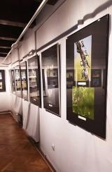 Po raz pierwszy wystawę stałą w brodnickim muzeum otwarto wirtualnie