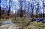 W Jarosławiu posadzili 80 drzew liściastych oraz 540 krzewów [FOTO]