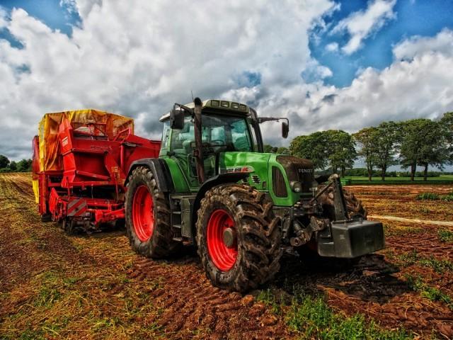 Powszechny spis rolny 2020. W Kaliszu szukają rachmistrzów. Kto może nim zostać i ile da się zarobić?