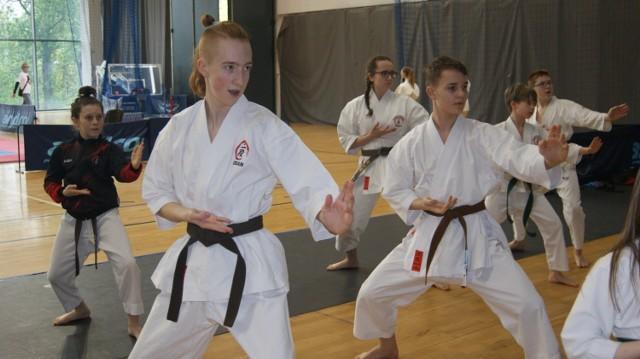 Reprezentanci Klubu Karate NIDAN Zielona Góra zdobyli dziewięć medali na prestiżowych zawodach Silesia Cup w Bytomiu.
