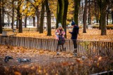 Siedem rzeczy, które musisz zrobić z dzieckiem jesienią! [PRZEGLĄD]
