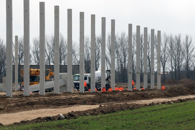 Budowa hali na byłym lotnisku w Legnicy.