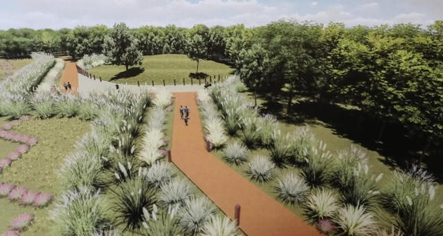 W 2019 roku odbyła się wystawa prac studentów Architektury Krajobrazu Politechniki Krakowskiej, których tematem był Park Lubostroń.