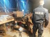 Policjanci zlikwidowali nielegalną fabrykę tytoniu w gminie Świnice Warckie