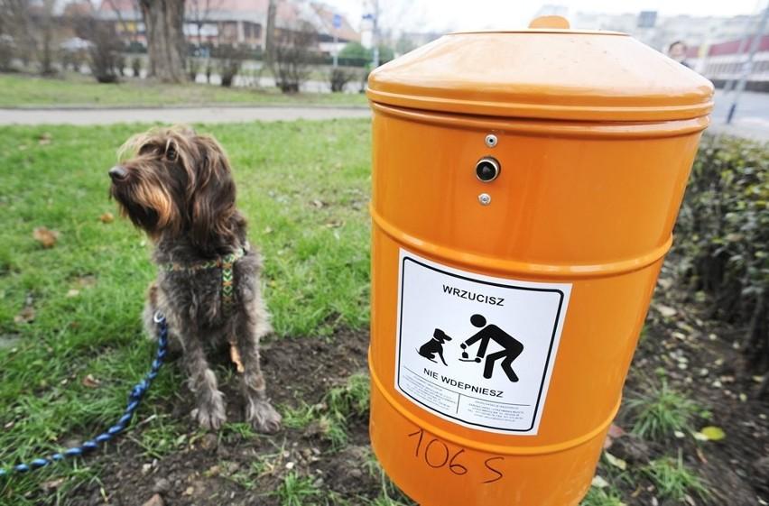 Wrocław: Po psie nie posprzątasz, nawet jeśli chcesz