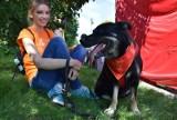 Miss na czterech łapkach w Białymstoku. Wolontariusze zorganizowali pokazów psów ze schroniska przed teatrem