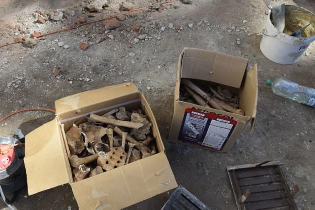 Podczas robót budowlanych związanych z wykopami znaleziono ludzkie kości. Zostały zgromadzone w dwóch pudełkach.