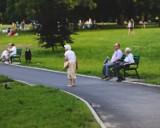 Czternasta emerytura już niebawem. Jakie stawki w 2021 roku? Oto wyliczenia! Tyle wyniesie Twoja 14 emerytura. Kiedy wypłaty?