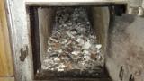 Gdańsk: Setki kawałków płyt meblowych na posesji. Palił nimi w piecu, strażnicy ukarali go mandatem [ZDJĘCIA]