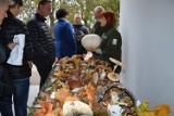 """Już w niedzielę wystawa grzybów na """"Jarmarku Letnim"""" w Słupsku"""