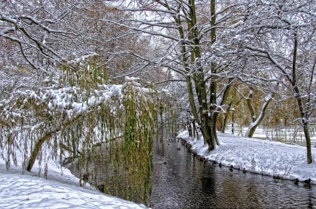 Koszaliński Park Książąt Pomorskich zimą