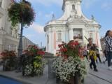 Wadowice. Pamiątki po papieżu Janie Pawle II to za mało na przyciągnięcie turystów. Miasto zmienia strategię promocji [ZDJĘCIA]