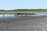 Gmina Bobrowice. Coraz mniej wody w Jeziorze Jańsko koło Strużki. A kiedyś był tam duży ośrodek wypoczynkowy