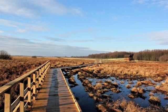 Jest to kolejna ścieżka powstała na terenie kompleksu Bagna Bubnów w Poleskim Parku Narodowym. Ma długość 6,5 km i prowadzi przez torfowisko niskie oraz lasy. W trakcie spaceru można zauważyć dzikie ptactwo i zwierzynę.