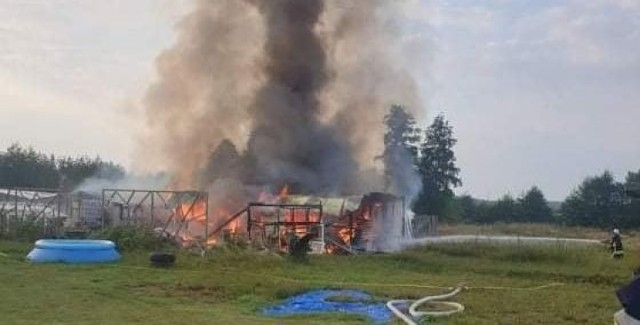 Gaszenie pożaru w okolicach Dąbia, który wybuchł w poniedziałek (13 września)