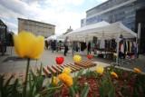 Jarmark w Katowicach - zobacz ZDJĘCIA. Na placu Kwiatowym można kupić sukienkę i wymienić się... roślinami