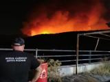 Strażacy z Kościana dłużej zostaną w Grecji. Przenieśli się z wyspy Evia do miejscowości Vilia, około 60 km od Aten [ZDJĘCIA]