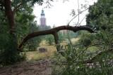 Nawałnica dokonała spustoszeń w Sycowie i okolicach. NOWE ZDJĘCIA! Czekamy na kolejne