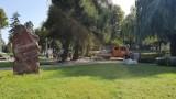 Puck chce być kolorowy. W sobotę w Parku Kaszubskim będą sadzić ponad 10 tysięcy krokusów, żonkili i tulipanów. Chcesz dołączyć? Zgłoś się
