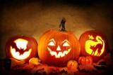 Jak przygotować dynię na Halloween? Dyniowy zawrót głowy. DIY. Zobacz inspiracje i ZDJĘCIA
