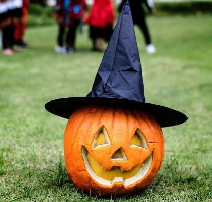 Dyniowy zawrót głowy. Jak przygotować dynię na Halloween? DIY. Zobacz inspiracje i ZDJĘCIA