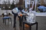 Lodowe rzeźby nad Stawkiem Zamkowym w Opolu [ZDJĘCIA]