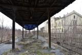 Odbudowa linii kolejowej Racibórz - Głubczyce - Racławice Śląskie. Jest umowa na wykonanie studium planistycznego