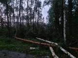 Nawałnica w powiecie oleśnickim. Grad i wiatr przyniósł zniszczenia, najbardziej ucierpiał Syców i okolice (30.7)