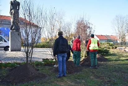 Młodzież sadzi drzewa. Zielona strona Wrześni znowu w akcji