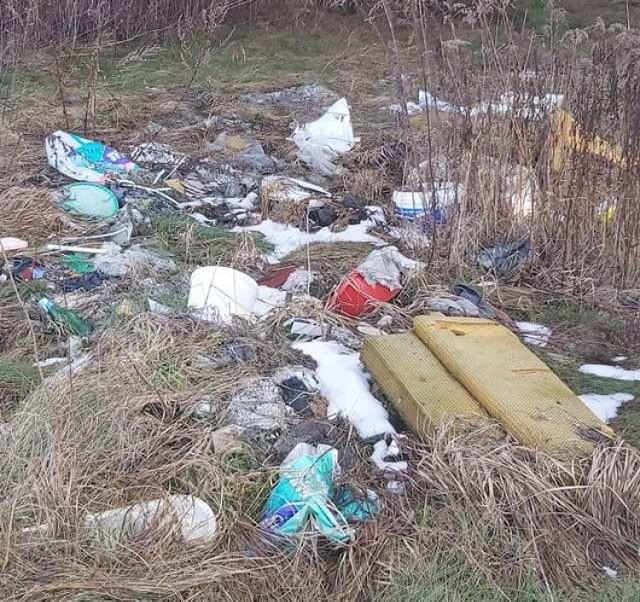 Śmieci wyrzucone w okolicach miejscowości Pole (gmina Gubin).