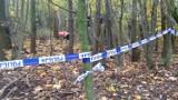 Kradzież szczątków na Pomorzu. Kolejne dwa zarzuty dla złodzieja ludzkich szczątków z Gdańska