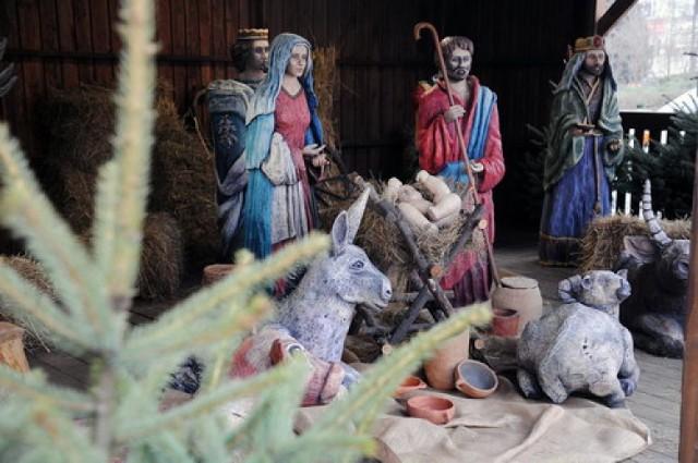 Zobacz najlepsze świąteczne witryny w Bydgoszczy!