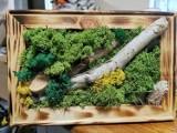 Niesamowite obrazy z mchu sołtysa Gębarzewa. Potrafi stworzyć prawdziwe cuda! [FOTO]