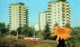 Historia Lubelskiej Spółdzielni Mieszkaniowej w Lublinie. Zobacz archiwalne zdjęcia jednej z największych dzielnic miasta