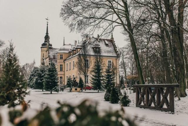 Od czasów noworzytnych właścicielami Borzęciczek byli Mycielscy, Sulimowscy, Bieleccy, Kurnatowscy, Gajewscy, Radolińscy, Stolberg-Wernigerode, a po II wojnie mieścił się tutaj Uniwersytet Ludowy. Od 1961 r. mieści się tutaj Specjalny Ośrodek Szkolno-Wychowawczy. Pierwszy pałac powstał już za czasów Gajewskich w poł. XVIII w. Obecny powstał w 1898 r. z inicjatywy hrabiego Ottona von Stolber-Wernigerode.