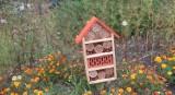 Chełm.  Są budki dla ptaków,  nietoperzy, hotel dla owadów i schron dla jeża   - zobacz zdjęcia