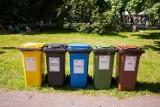 """Ministerstwo Klimatu wprowadza program """"Czystość plus"""". Wyższe kary za zaśmiecanie oraz pomysły na obniżenie kosztów gospodarowania odpadami"""