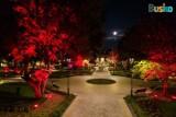 Buski Park Zdrojowy nocą wygląda pięknie! Sami zobaczcie ZDJĘCIA